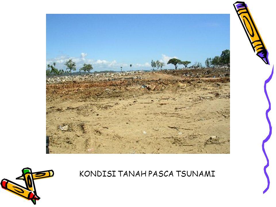KONDISI TANAH PASCA TSUNAMI