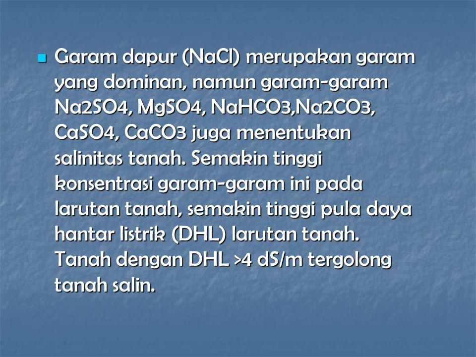 Garam dapur (NaCl) merupakan garam yang dominan, namun garam-garam Na2SO4, MgSO4, NaHCO3,Na2CO3, CaSO4, CaCO3 juga menentukan salinitas tanah. Semakin