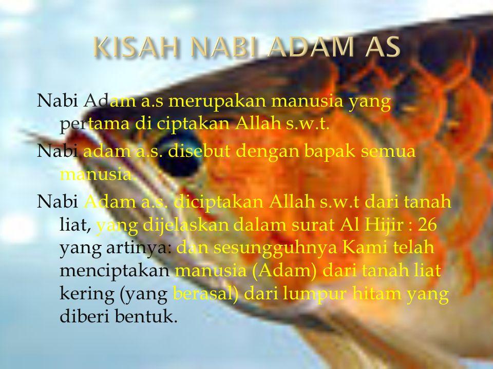 Nabi Adam a.s merupakan manusia yang pertama di ciptakan Allah s.w.t. Nabi adam a.s. disebut dengan bapak semua manusia. Nabi Adam a.s. diciptakan All