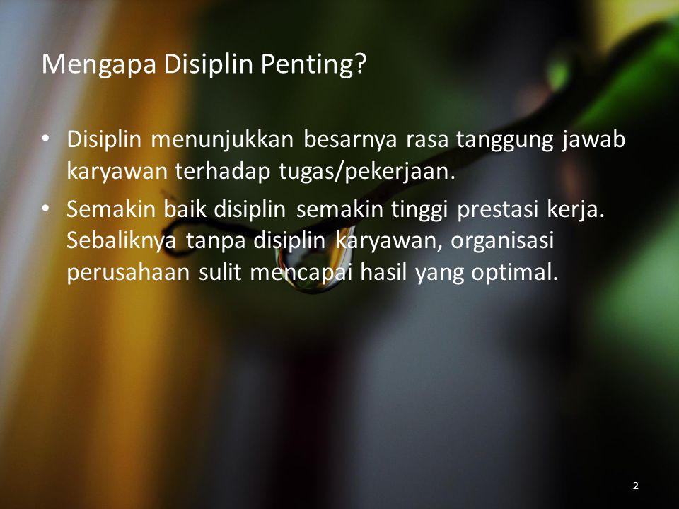 2 Mengapa Disiplin Penting? Disiplin menunjukkan besarnya rasa tanggung jawab karyawan terhadap tugas/pekerjaan. Semakin baik disiplin semakin tinggi