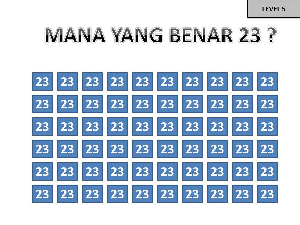 23 LEVEL 5