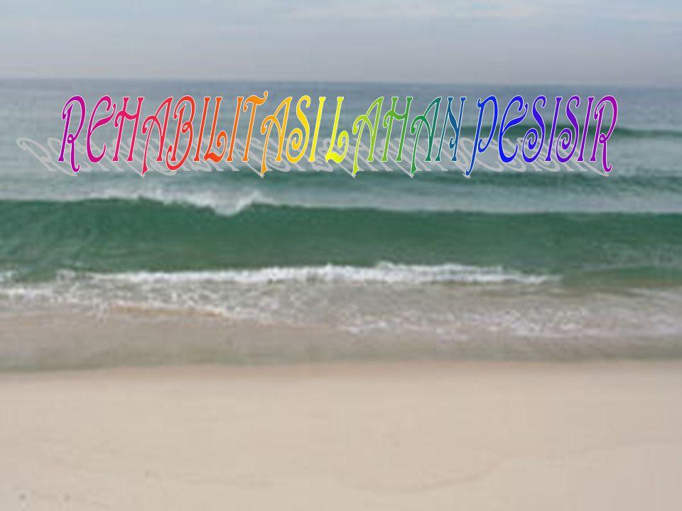 KONDISI LAHAN PESISIR Lahan pesisir adalah lahan yang terdapat di daerah pesisir pantai yang sebagian besar terdiri atas tanah dengan struktur pasir