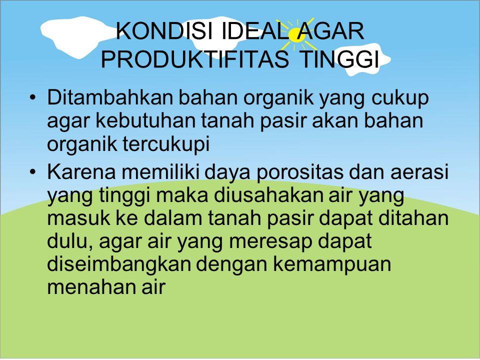 KONDISI IDEAL AGAR PRODUKTIFITAS TINGGI Ditambahkan bahan organik yang cukup agar kebutuhan tanah pasir akan bahan organik tercukupi Karena memiliki d