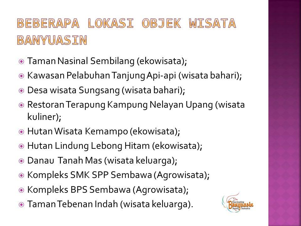  Taman Nasinal Sembilang (ekowisata);  Kawasan Pelabuhan Tanjung Api-api (wisata bahari);  Desa wisata Sungsang (wisata bahari);  Restoran Terapun