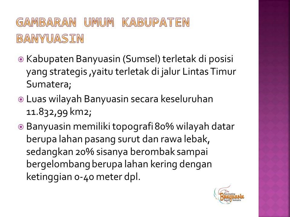  Kabupaten Banyuasin (Sumsel) terletak di posisi yang strategis,yaitu terletak di jalur Lintas Timur Sumatera;  Luas wilayah Banyuasin secara keselu