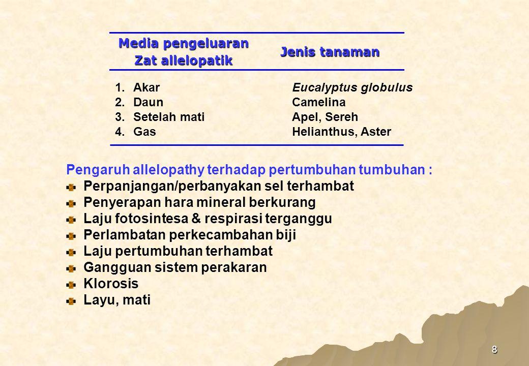 8 Pengaruh allelopathy terhadap pertumbuhan tumbuhan : Perpanjangan/perbanyakan sel terhambat Penyerapan hara mineral berkurang Laju fotosintesa & respirasi terganggu Perlambatan perkecambahan biji Laju pertumbuhan terhambat Gangguan sistem perakaran Klorosis Layu, mati Jenis tanaman Media pengeluaran Zat allelopatik 1.AkarEucalyptus globulus 2.DaunCamelina 3.Setelah matiApel, Sereh 4.GasHelianthus, Aster