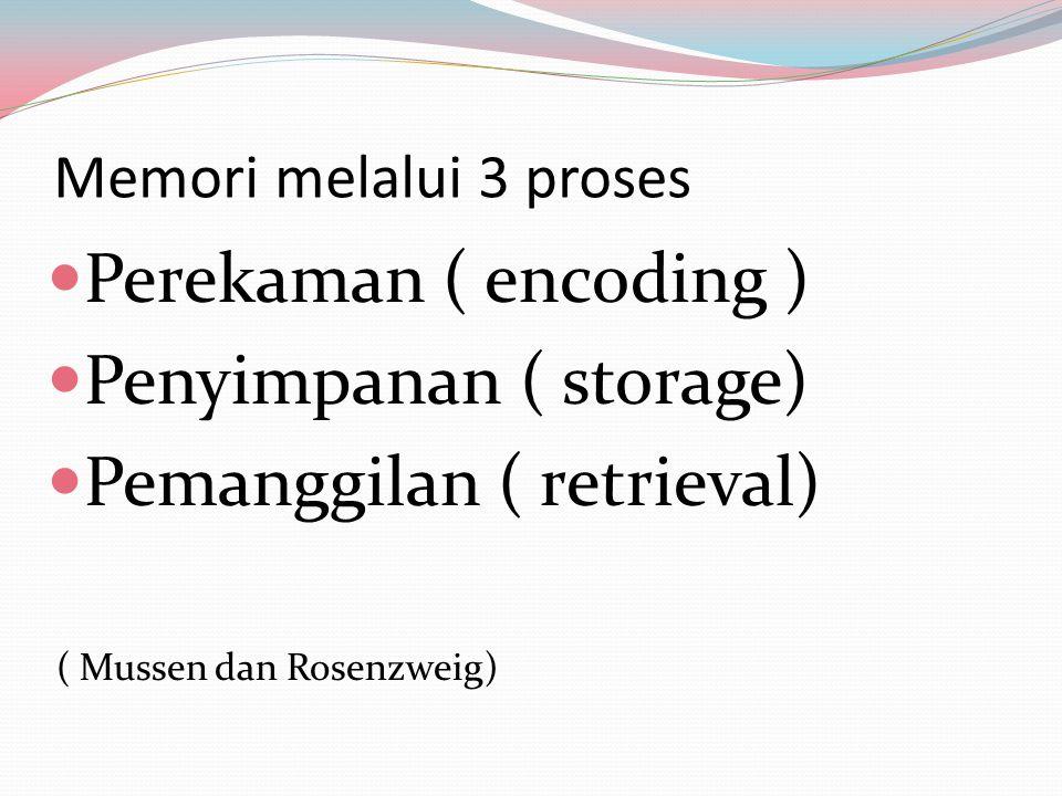 Memori melalui 3 proses Perekaman ( encoding ) Penyimpanan ( storage) Pemanggilan ( retrieval) ( Mussen dan Rosenzweig)