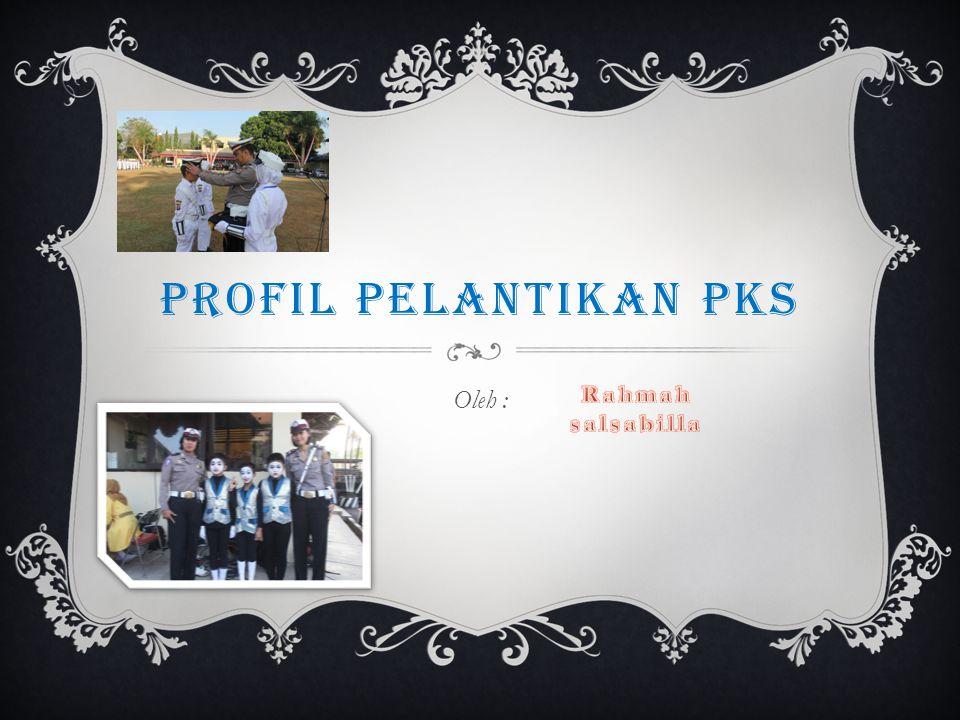 PROFIL PELANTIKAN PKS Oleh :