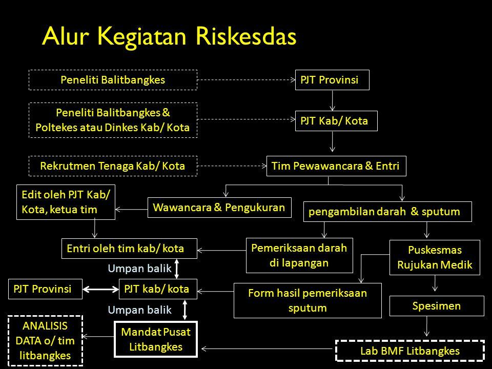 Alur Kegiatan Riskesdas Tim Pewawancara & EntriRekrutmen Tenaga Kab/ Kota PJT Provinsi PJT Kab/ Kota Peneliti Balitbangkes Peneliti Balitbangkes & Pol