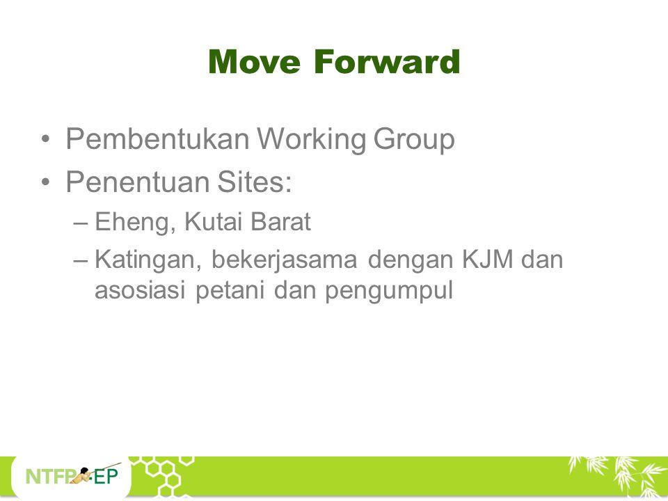 Move Forward Pembentukan Working Group Penentuan Sites: –Eheng, Kutai Barat –Katingan, bekerjasama dengan KJM dan asosiasi petani dan pengumpul