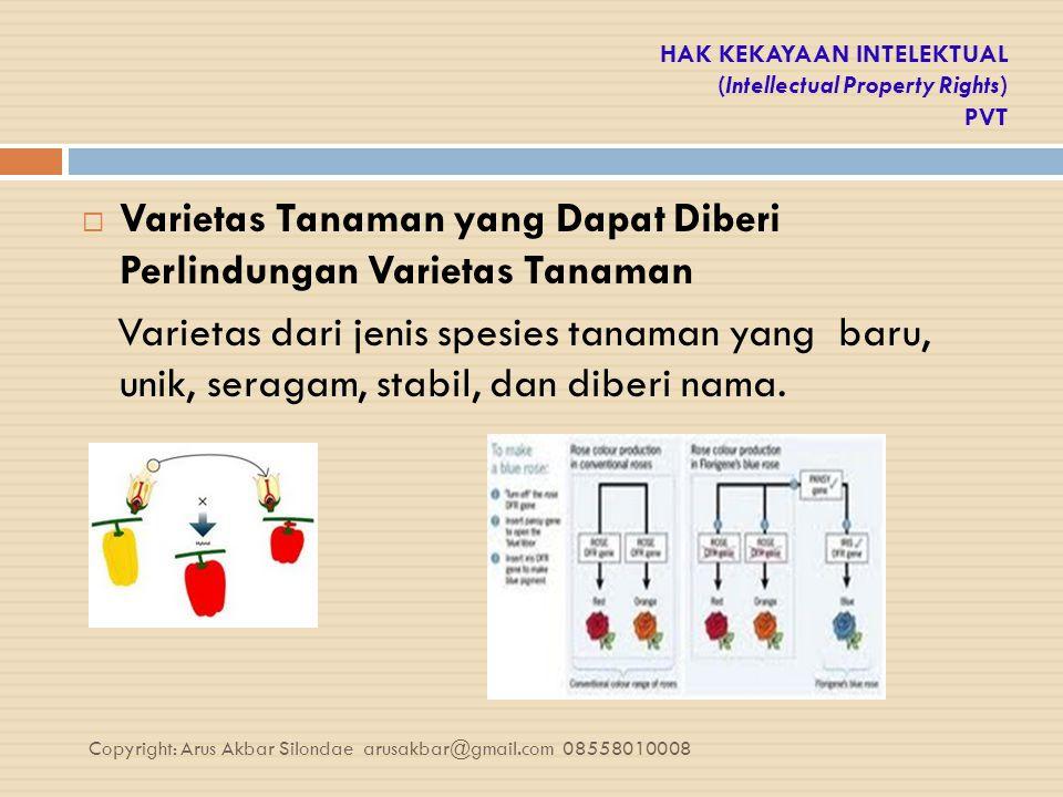 HAK KEKAYAAN INTELEKTUAL (Intellectual Property Rights) PVT  Varietas Tanaman yang Dapat Diberi Perlindungan Varietas Tanaman Varietas dari jenis spe