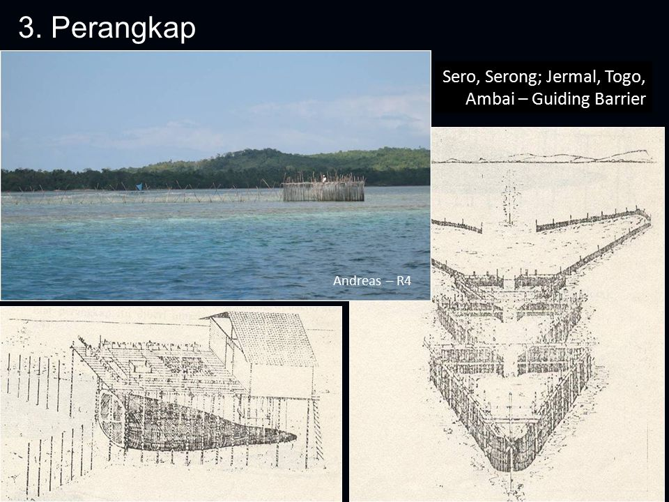 3. Perangkap Sero, Serong; Jermal, Togo, Ambai – Guiding Barrier Andreas – R4