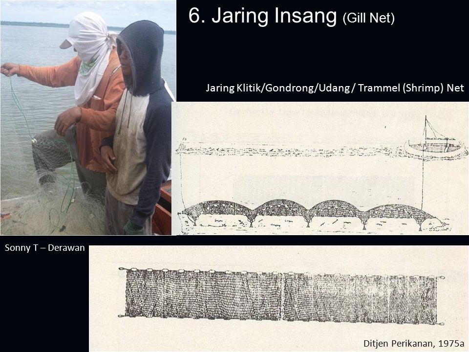 6. Jaring Insang (Gill Net) Jaring Klitik/Gondrong/Udang / Trammel (Shrimp) Net Sonny T – Derawan Ditjen Perikanan, 1975a