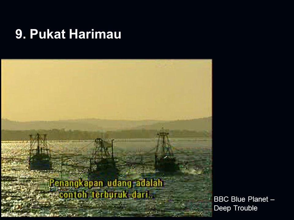 9. Pukat Harimau BBC Blue Planet – Deep Trouble