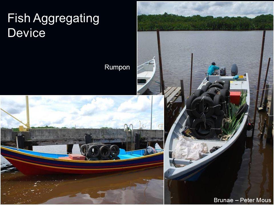 Fish Aggregating Device Rumpon Brunae – Peter Mous