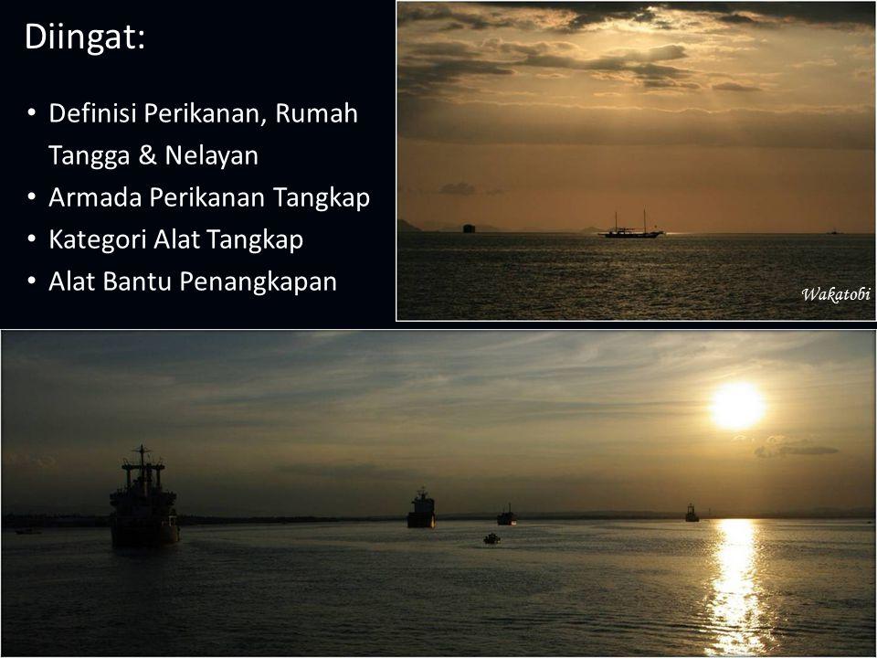 Diingat: Definisi Perikanan, Rumah Tangga & Nelayan Armada Perikanan Tangkap Kategori Alat Tangkap Alat Bantu Penangkapan Wakatobi