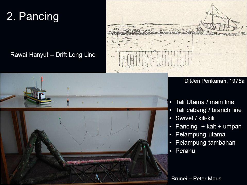 2. Pancing Rawai Hanyut – Drift Long Line Tali Utama / main line Tali cabang / branch line Swivel / kili-kili Pancing + kait + umpan Pelampung utama P