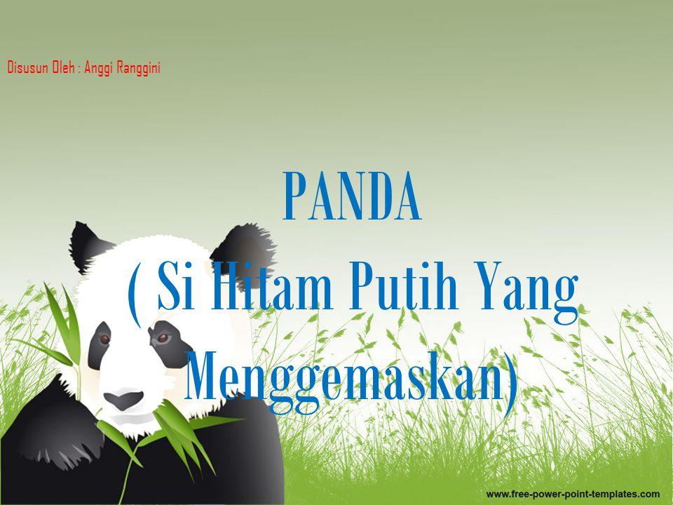 Pengertian Panda adalah seekor mamalia yang biasanya diklasifikasikan ke dalam keluarga beruang, Ursidae, yang hewan asli Tiongkok tengah.