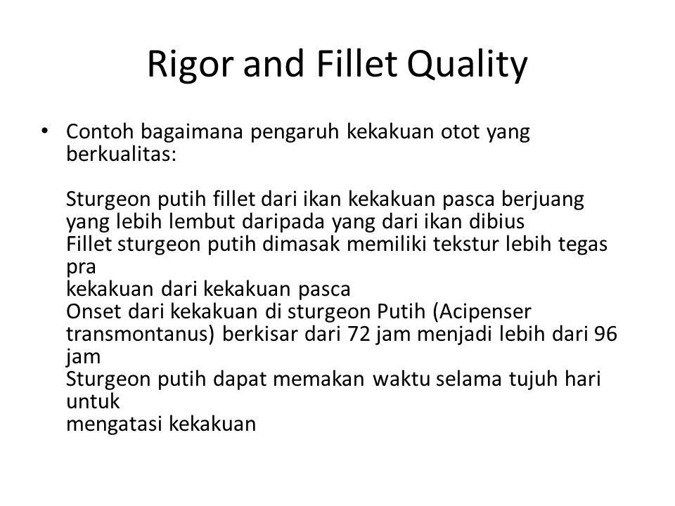Rigor and Fillet Quality Contoh bagaimana pengaruh kekakuan otot yang berkualitas: Sturgeon putih fillet dari ikan kekakuan pasca berjuang yang lebih