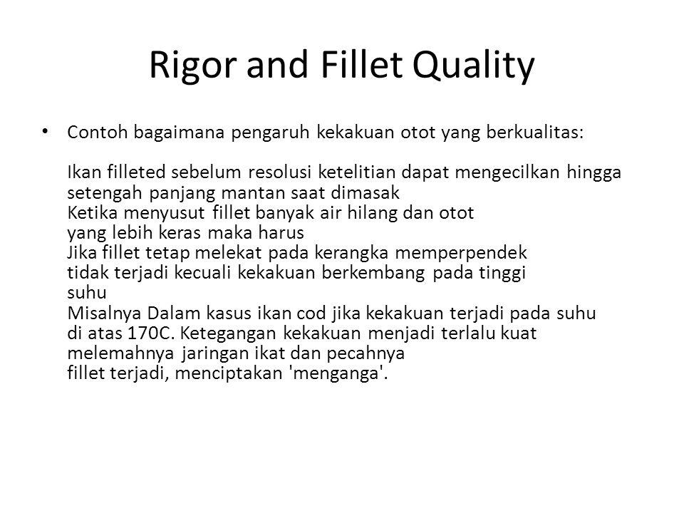 Rigor and Fillet Quality Contoh bagaimana pengaruh kekakuan otot yang berkualitas: Ikan filleted sebelum resolusi ketelitian dapat mengecilkan hingga