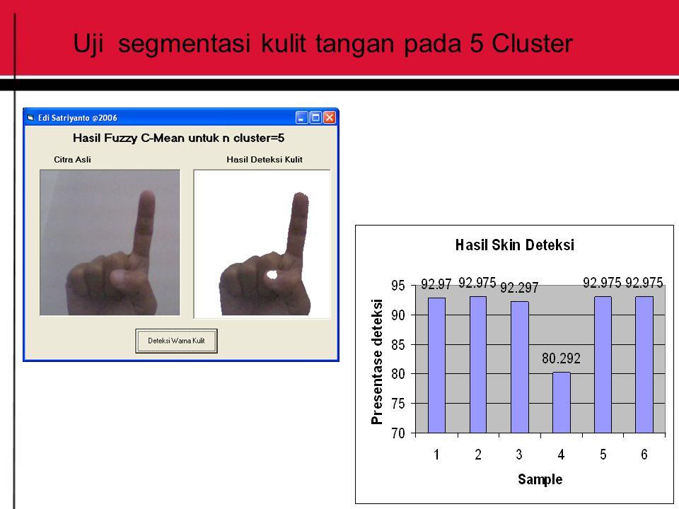 Uji segmentasi kulit tangan pada 5 Cluster
