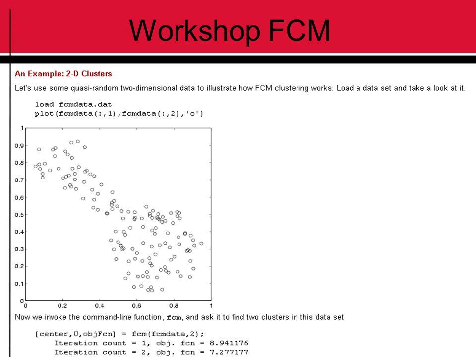 Workshop FCM