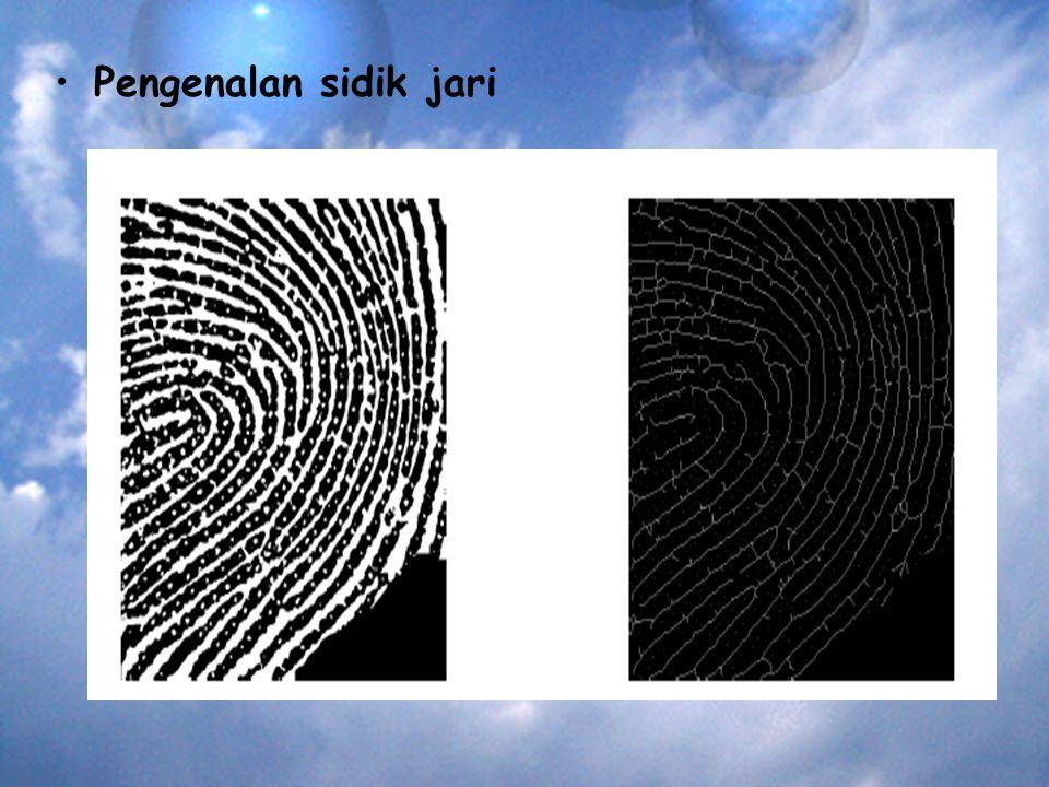 Pengenalan sidik jari