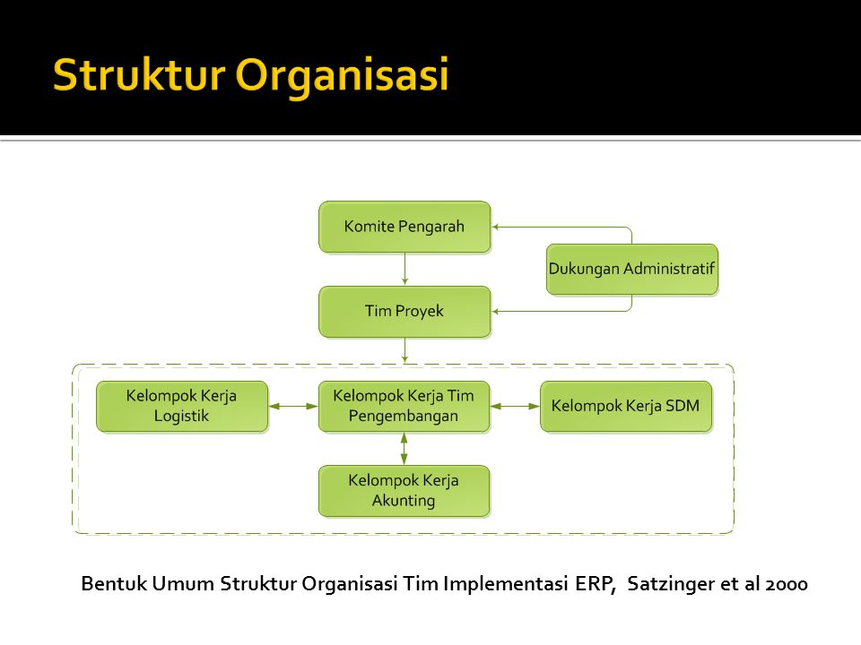 Bentuk Umum Struktur Organisasi Tim Implementasi ERP, Satzinger et al 2000
