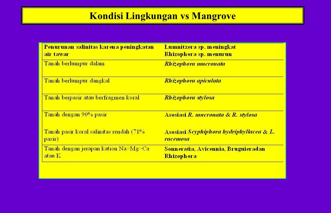 ECOLOGICAL PREFERENCES MANGROVE 1. Tipe Tanah: Keras atau lembek, Perbandingan kandungan pasir & liat beragam 2. Salinitas:Variasi harian dan nilai ra