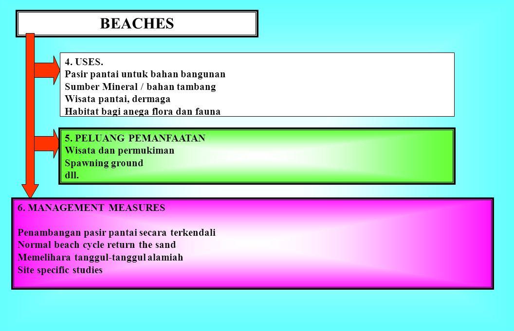 BEACHES 1. BATASAN. Beach lazimnya tersusun atas material sedimen unconsolidated yang terangkut ke pantai dan mempunyai bentuk khas, dibatasi oleh gar