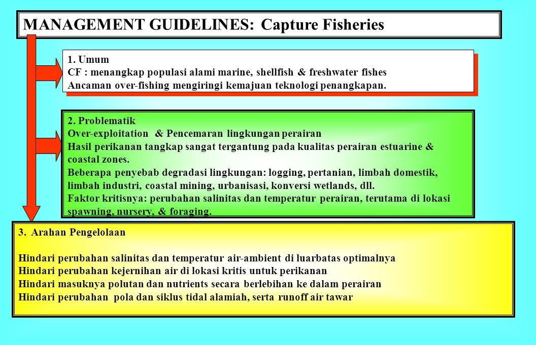 MANAGEMENT GUIDELINES: Coastal Aquaculture 1. Umum Mariculture menghasilkan udang dan ikan berkualitas ekspor Operasi tambak intensif mengakibatkan de