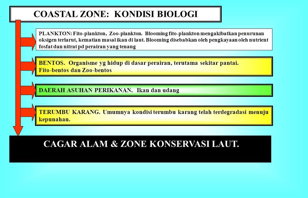 COASTAL ZONE: Kondisi Fisik-Kimia 1. Topografi Pantai: Landai vs. curam 2. Batimetri: Kedalaman perairan dangkal, dasar laut melandai 3. Akresi dan Ab