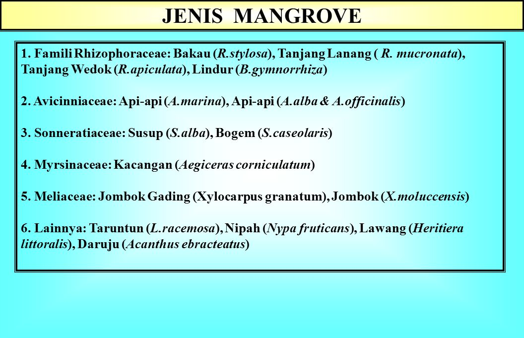 Hutan mangrove : Suatu persekutuan hidup alam hayati dan lingkungannya yang terdapatdi daerah pantai-laut kawasan tropika Kondisi pantai tidak terekspos angin kencang atau gelombang laut yang besar, Di sekitar teluk yang lautnya tenang &daratannya melandai ke laut, tergenang waktu pasang dan kering waktu surut Muara sungai, delta, terumbu karang, lagoon Bakau adalah salah satu nama kelompok jenis yg tergolong ke dalam hutan mangrove Faktor lingkungan tumbuh: Jarak perbedaan pasang-surut, Frekuensi dan lama genangan air laut, Dinamika pasang-surut, Aerasi tanah, dan Salinitas.