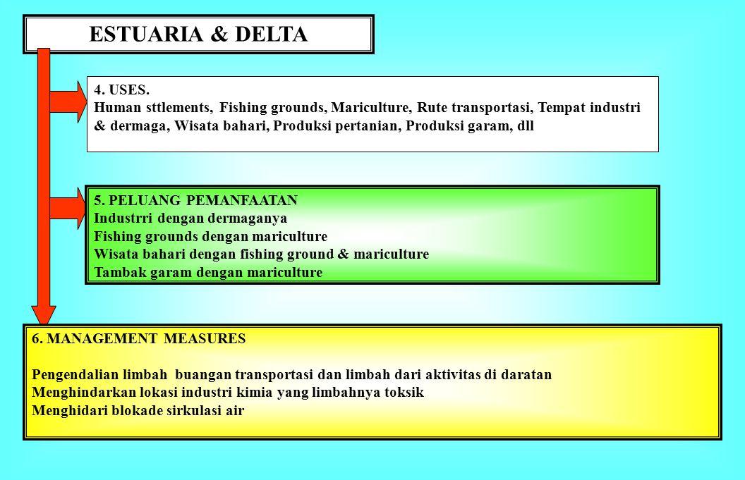 ESTUARIA & DELTA 1.BATASAN.