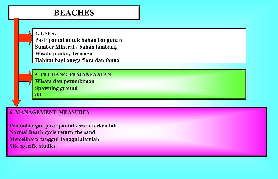 BEACHES 1.BATASAN.