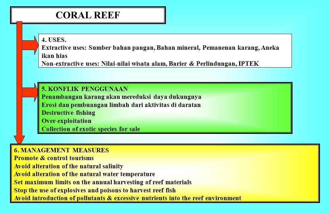 Coral reef 1.BATASAN.