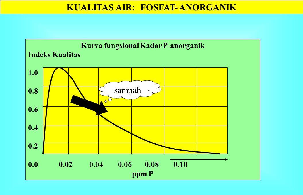 SIKLUS P DALAM PERAIRAN Jaringan tanaman Jaringan binatang DIP P-anorganik larut Batuan fosfat SEDIMEN Jaringan Bakteri POP & DOP particulate & dissolved SAMPAH