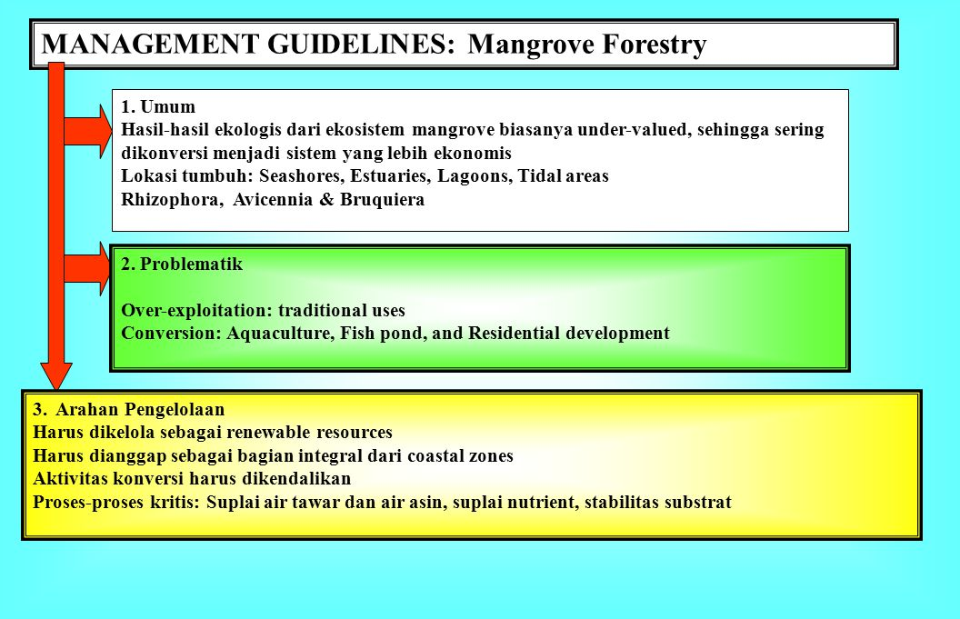 MANAGEMENT GUIDELINES: Sand mining 1.