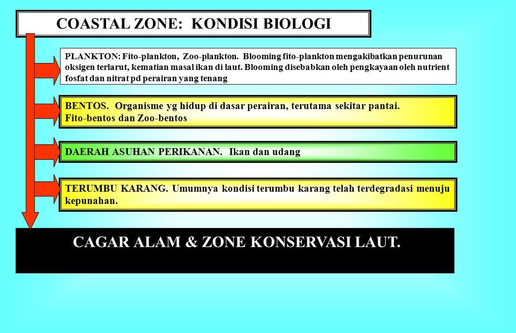 COASTAL ZONE: Kondisi Fisik-Kimia 1.Topografi Pantai: Landai vs.