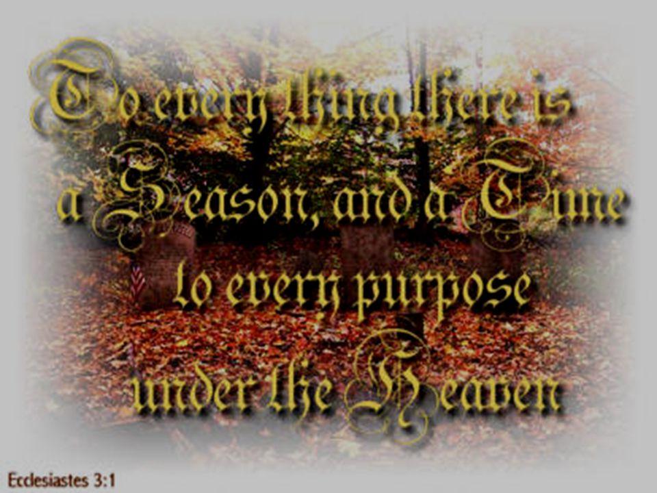 Purpose Vanity of vanities, saith the Preacher, vanity of vanities; all is vanity.