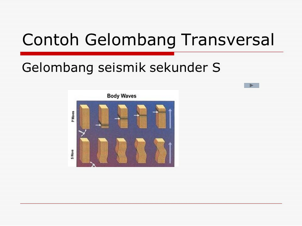 Contoh Gelombang Transversal Gelombang seismik sekunder S