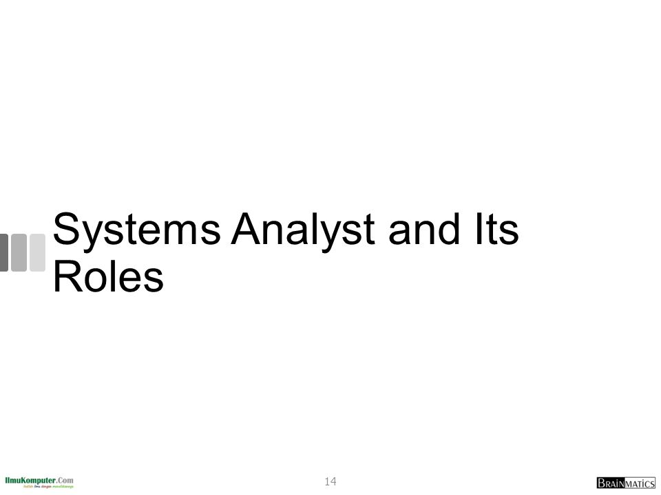 Systems Analyst and Its Roles 14