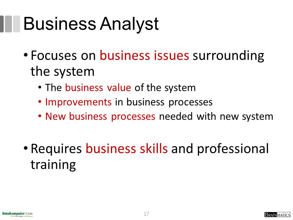 Business Analyst Focuses on business issues surrounding the system The business value of the system Improvements in business processes New business pr