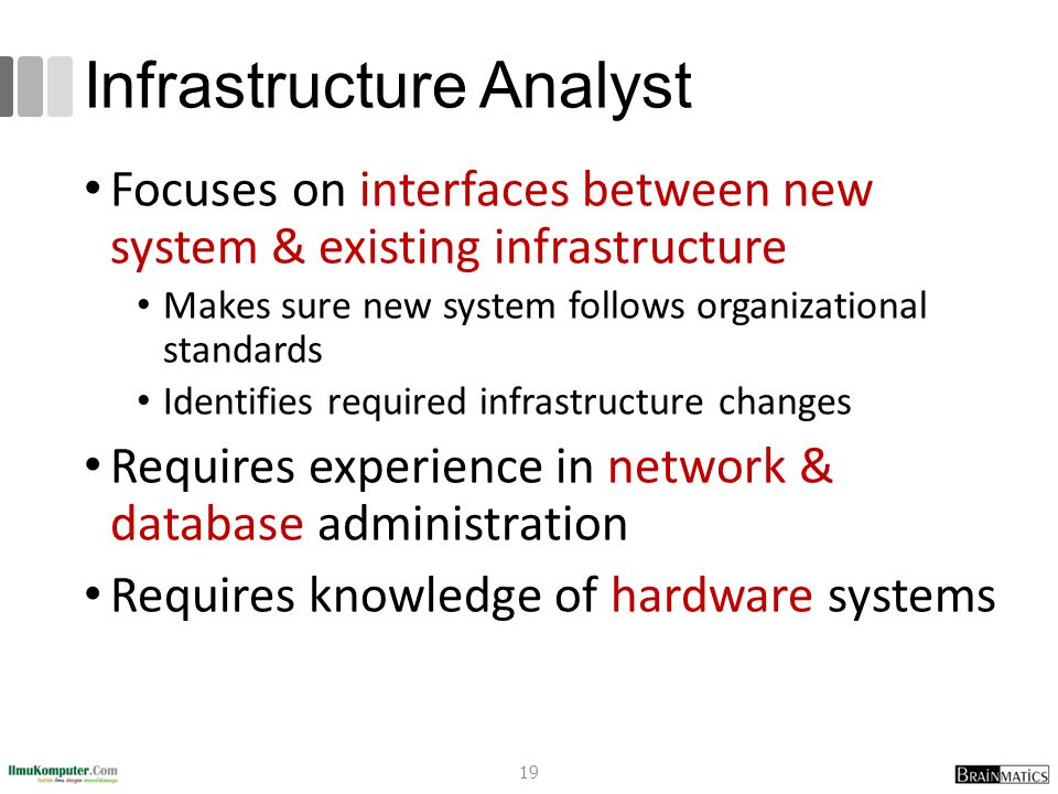 Infrastructure Analyst Focuses on interfaces between new system & existing infrastructure Makes sure new system follows organizational standards Identifies required infrastructure changes Requires experience in network & database administration Requires knowledge of hardware systems 19