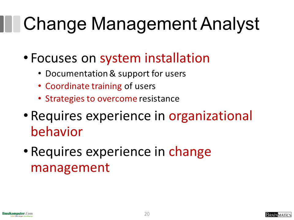 Change Management Analyst Focuses on system installation Documentation & support for users Coordinate training of users Strategies to overcome resistance Requires experience in organizational behavior Requires experience in change management 20