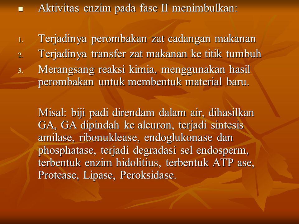 Aktivitas enzim pada fase II menimbulkan: Aktivitas enzim pada fase II menimbulkan: 1. Terjadinya perombakan zat cadangan makanan 2. Terjadinya transf