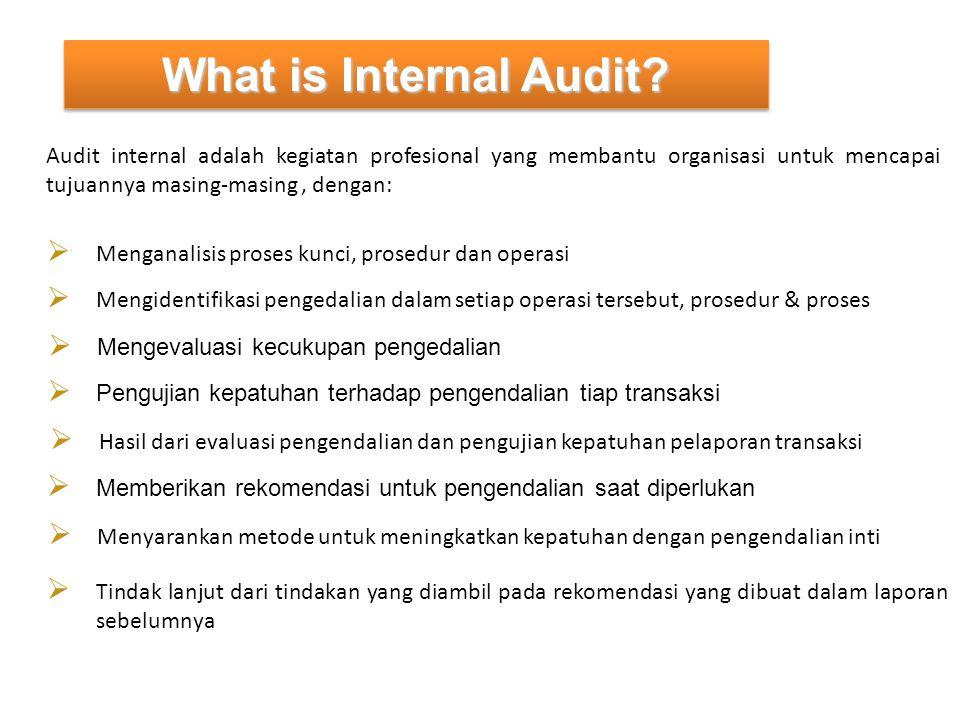 PENGETAHUAN & KEAHLIAN Ahli dalam bidang auditing, akuntansi, sistem informasi, pengendalian dan risiko bisnis, manajemen, ekonomi dan keuangan, hukum dagang, metode kuantitatif.