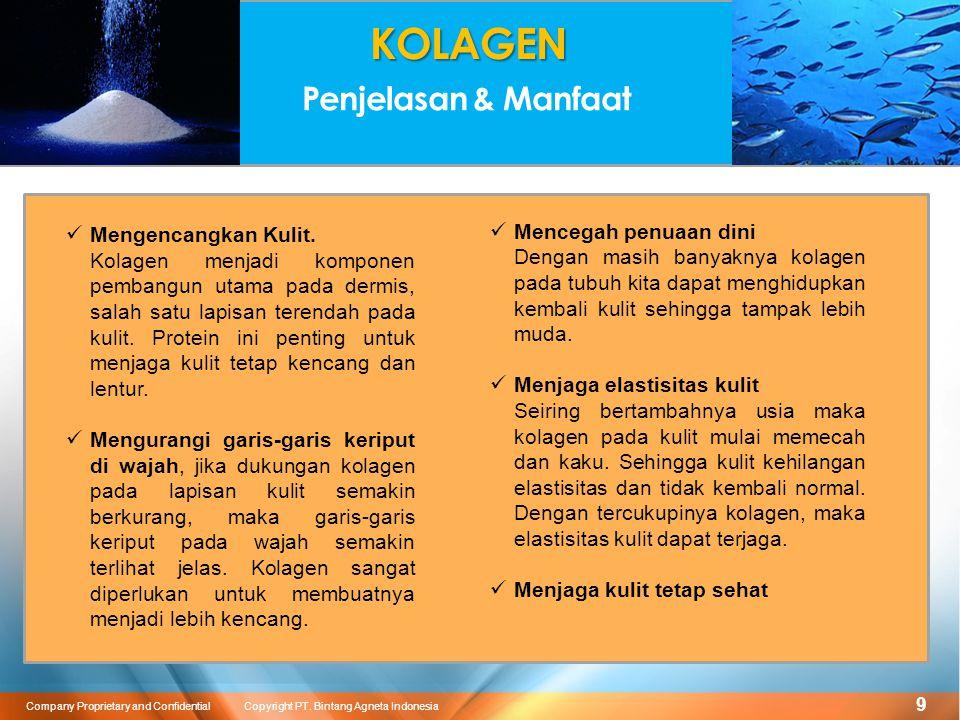 10 Company Proprietary and Confidential Copyright PT. Bintang Agneta Indonesia