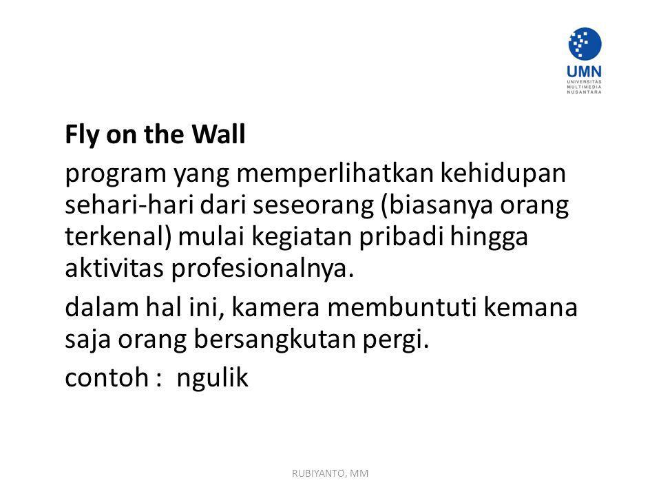 Fly on the Wall program yang memperlihatkan kehidupan sehari-hari dari seseorang (biasanya orang terkenal) mulai kegiatan pribadi hingga aktivitas profesionalnya.