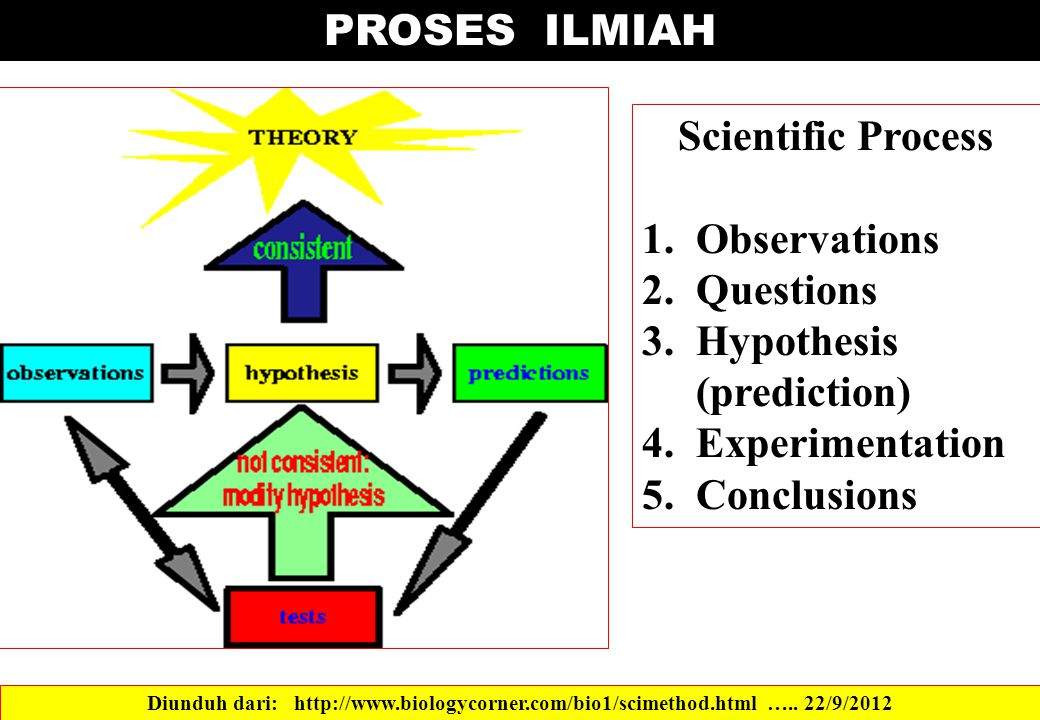Scientific Process 1.Observations 2.Questions 3.Hypothesis (prediction) 4.Experimentation 5.Conclusions PROSES ILMIAH Diunduh dari: http://www.biology